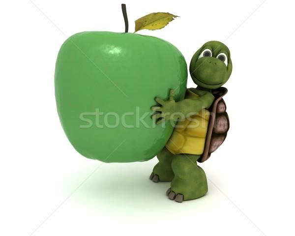 Teknősbéka alma 3d render víz étel gyümölcs Stock fotó © kjpargeter