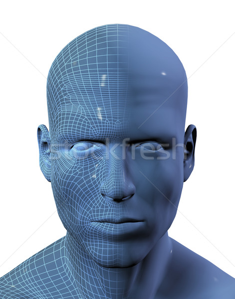 3D render of males head with wireframe on half Stock photo © kjpargeter