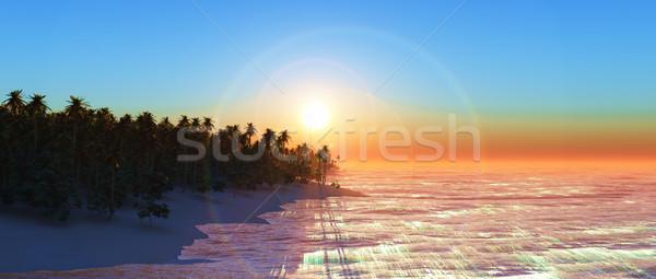 3D widecreen palm tree island at sunset Stock photo © kjpargeter