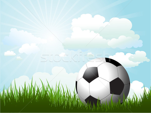 Football in grass  Stock photo © kjpargeter