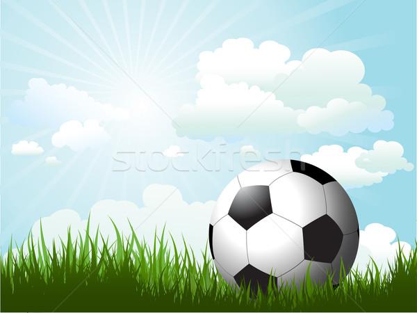 футбола трава Солнечный небе спорт природы Сток-фото © kjpargeter