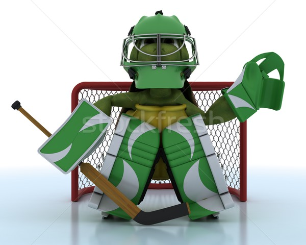 tortoise playing ice hockey Stock photo © kjpargeter