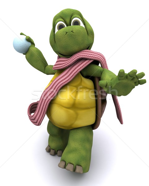 tortoise throwing a snowball Stock photo © kjpargeter