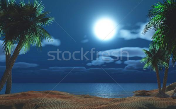 Palm tree island at night Stock photo © kjpargeter