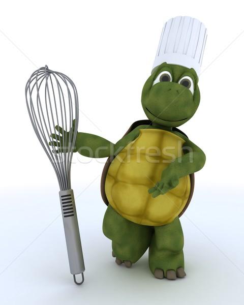 Teknősbéka szakács léggömb habaró 3d render víz Stock fotó © kjpargeter