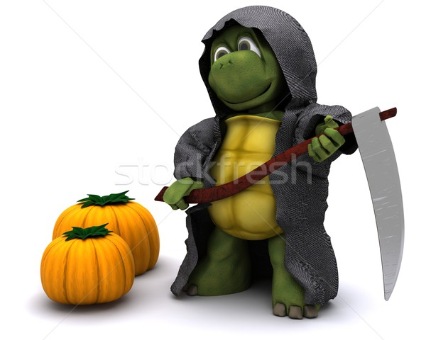 tortoise dressed as the grim reaper for halloween Stock photo © kjpargeter