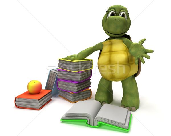 черепаха чтение книга 3d визуализации воды школы Сток-фото © kjpargeter