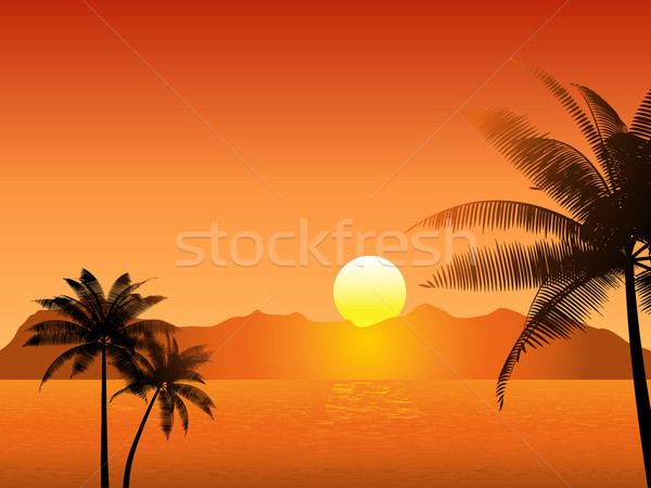 Tropikal gün batımı sahne palmiye ağaçları ağaç deniz Stok fotoğraf © kjpargeter