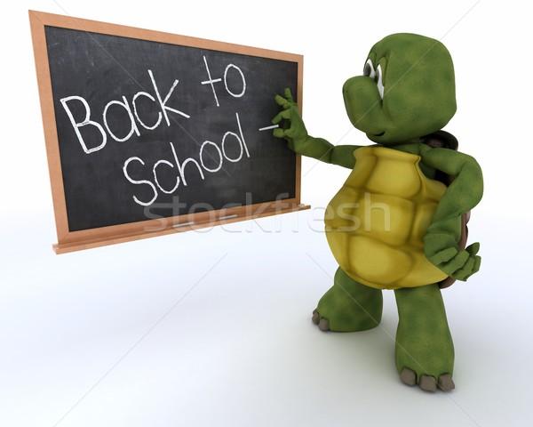 Tartaruga escolas giz conselho de volta à escola 3d render Foto stock © kjpargeter