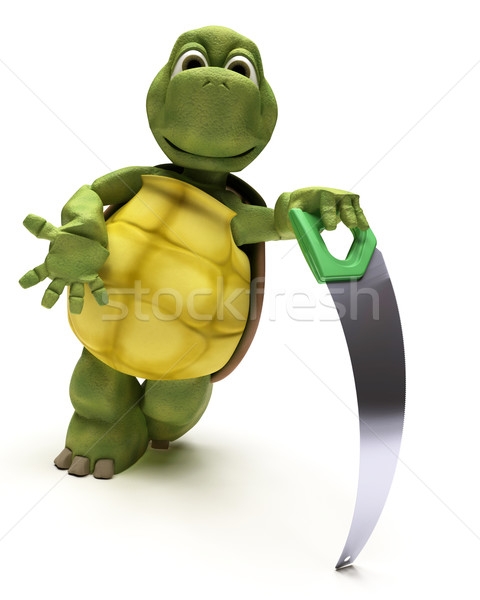 Tortoise with a wood saw Stock photo © kjpargeter