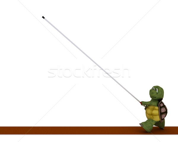 tortoise competing in pole vault Stock photo © kjpargeter