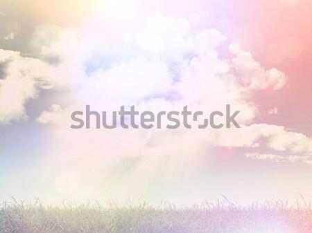 3D gramíneo paisagem retro efeito 3d render Foto stock © kjpargeter