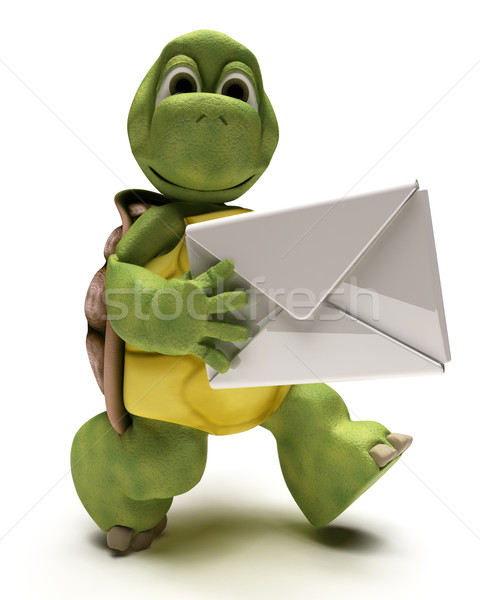 Tortoise with a white envelope Stock photo © kjpargeter