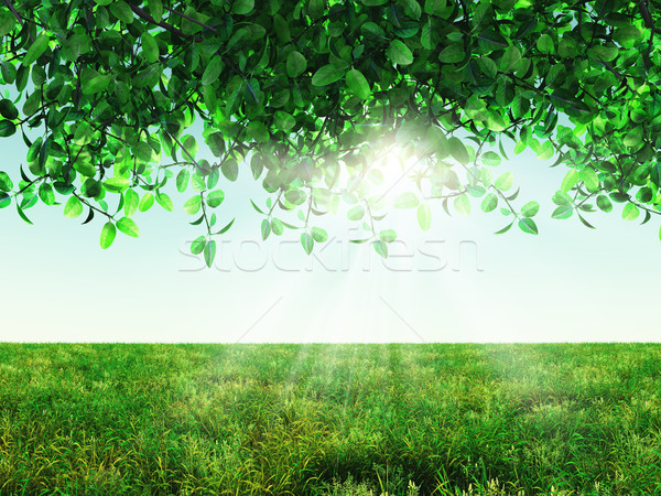 3D landscape with leaves and meadow Stock photo © kjpargeter