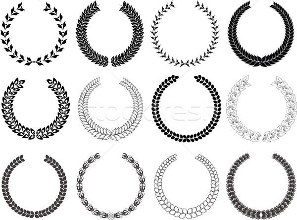 Gyűjtemény babér különböző dizájnok levél levelek Stock fotó © kjpargeter