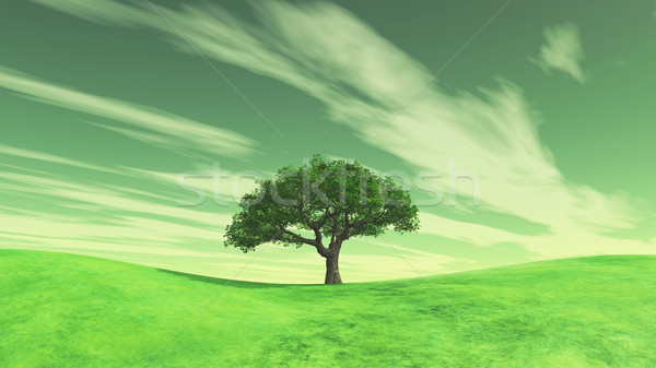 3D landscape with tree on green grass hills Stock photo © kjpargeter