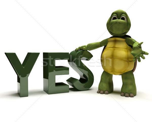 Teknősbéka igen felirat 3d render üzlet víz Stock fotó © kjpargeter