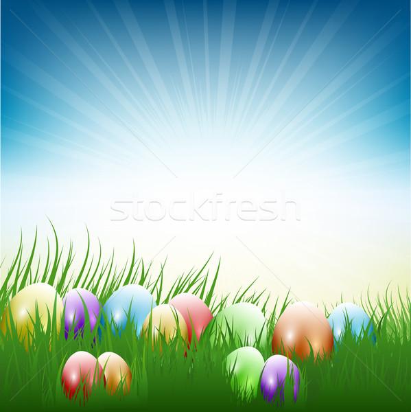 Easter eggs in grass  Stock photo © kjpargeter
