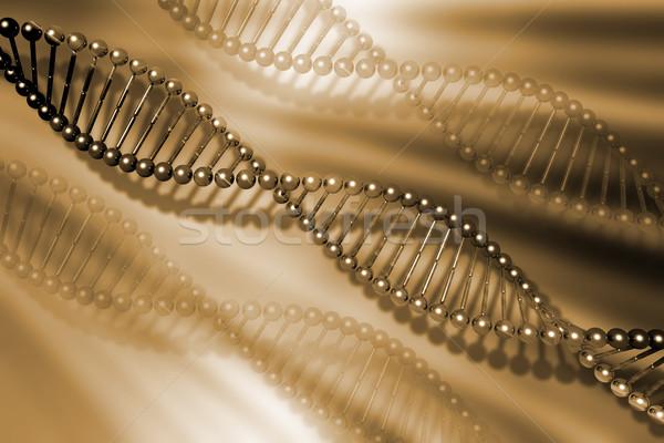DNA strands Stock photo © kjpargeter