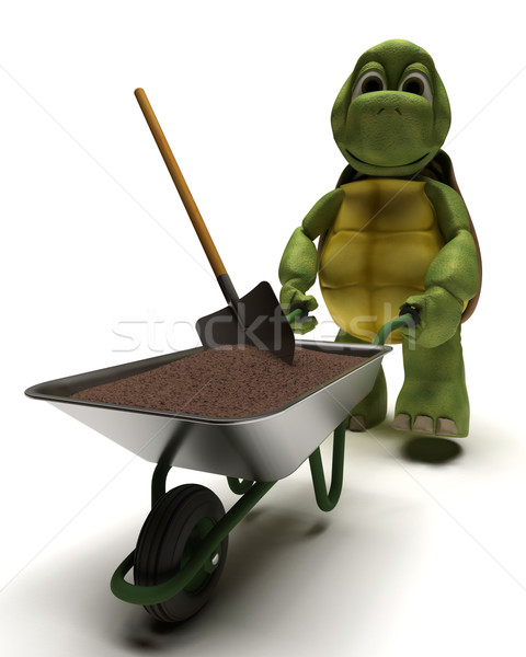 tortoise gardener with a wheel barrow carrying soil Stock photo © kjpargeter