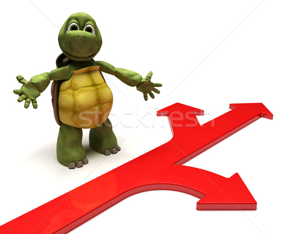 Tortoise with arrows Stock photo © kjpargeter