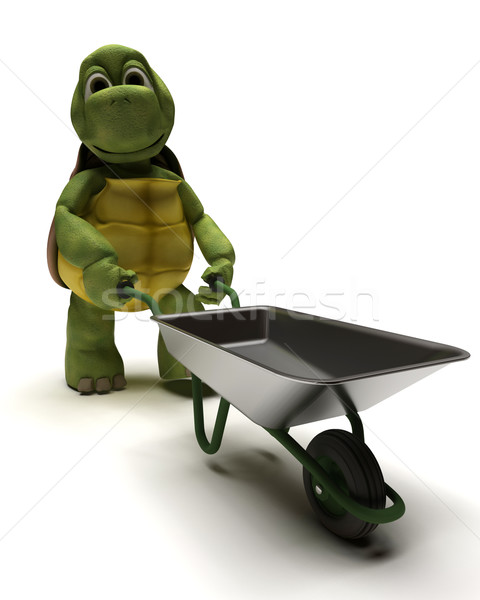 tortoise with a wheel barrow Stock photo © kjpargeter