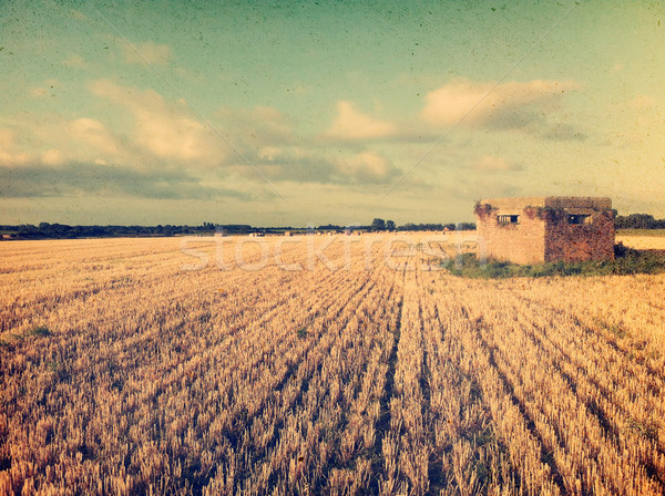 Klasszikus kukoricamező kép régi épület hatás Stock fotó © kjpargeter