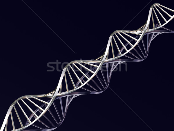 DNA strands Stock photo © kjpargeter