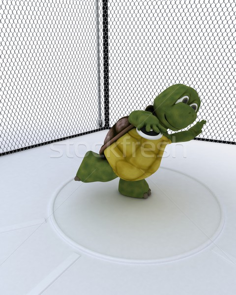Teknősbéka versenyző diszkosz 3d render víz sport Stock fotó © kjpargeter