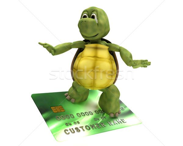 Teknősbéka hitelkártya 3d render víz vásárlás óceán Stock fotó © kjpargeter