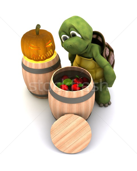 tortoise bobbing for apples Stock photo © kjpargeter