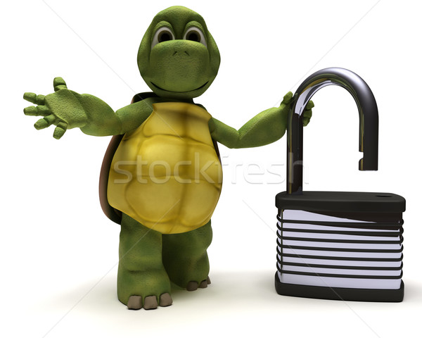 Tortoise with padlock Stock photo © kjpargeter