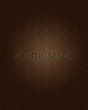 Leather Texture Stock photo © kjpargeter