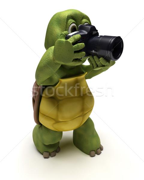 Tortoise with slr camera Stock photo © kjpargeter