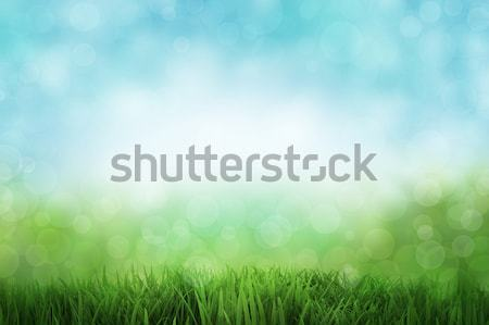 Stock photo: Abstract landscape