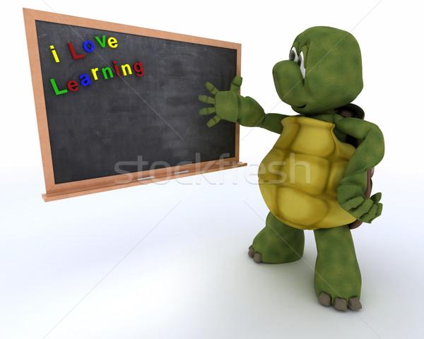 черепаха школы мелом совета 3d визуализации воды Сток-фото © kjpargeter