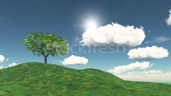 3D tree on a grassy hill Stock photo © kjpargeter
