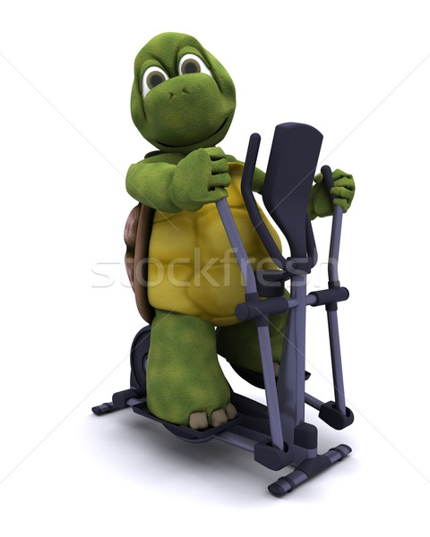 Tortoise with a cross trainer Stock photo © kjpargeter