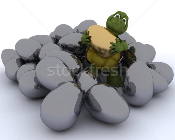 tortoise with golden easter egg Stock photo © kjpargeter