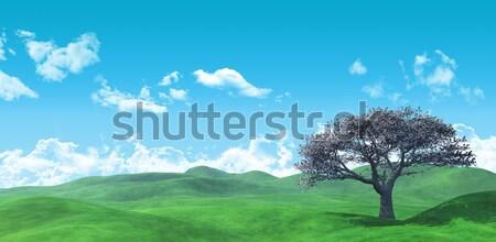3D szélesvásznú fa tájkép 3d render égbolt Stock fotó © kjpargeter
