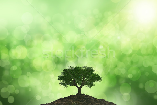 3D background of the sun shining onto a tree against a bokeh bac Stock photo © kjpargeter