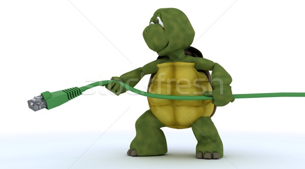 tortoise with a RJ45 cable Stock photo © kjpargeter