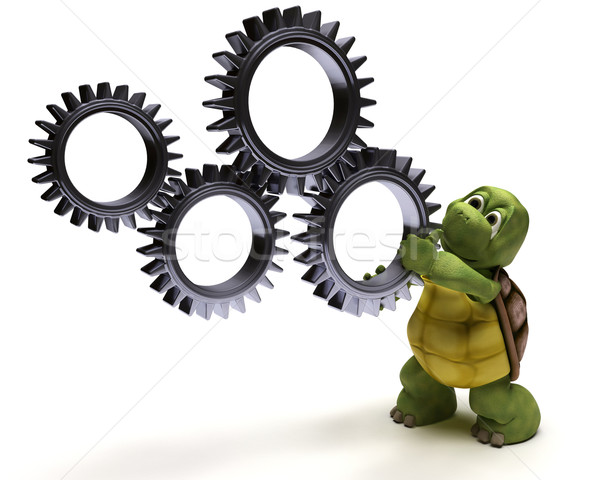 Stock photo: Tortoise with gears
