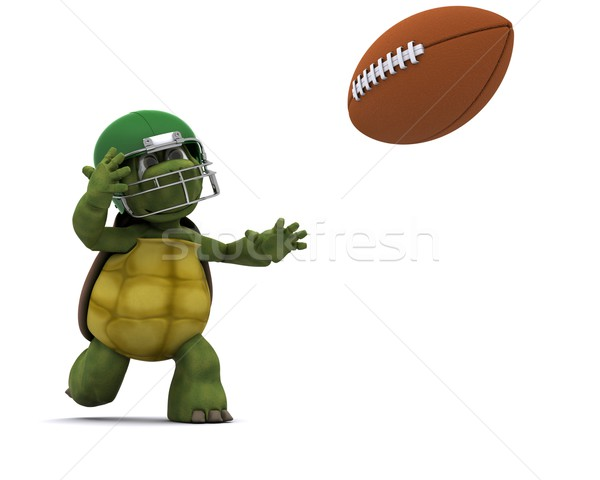 Tortoise throwing an american football Stock photo © kjpargeter