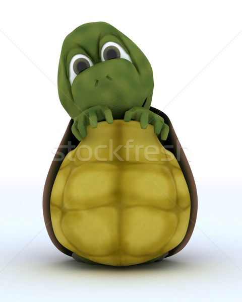 Tortoise Caricature Hiding in Their Shell Stock photo © kjpargeter