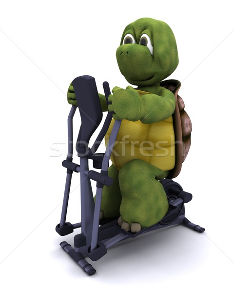 tortoise runnning on a cross trainer Stock photo © kjpargeter