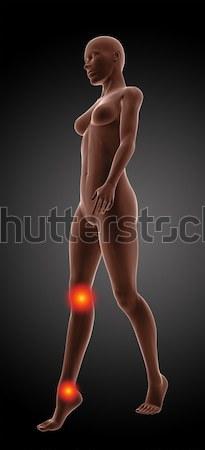 Сток-фото: женщины · медицинской · скелет · 3d · визуализации · ходьбе · колено