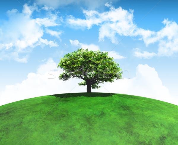3d визуализации дерево травянистый пейзаж пышный Сток-фото © kjpargeter