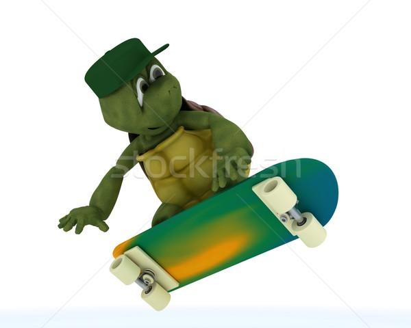 tortoise riding a skateboard Stock photo © kjpargeter