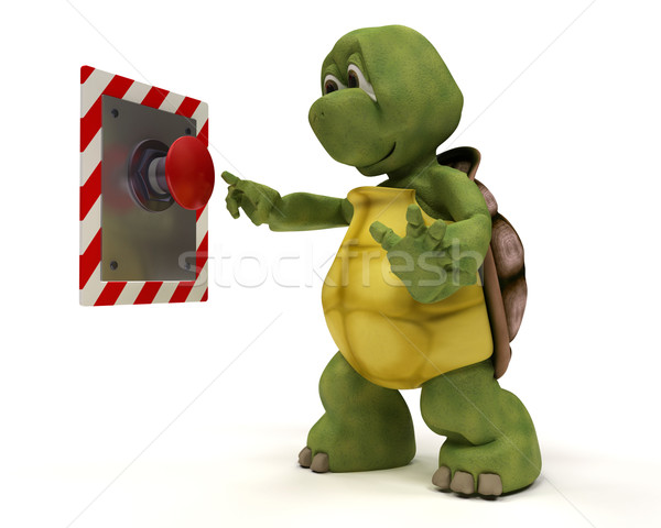 Tortoise with push button Stock photo © kjpargeter